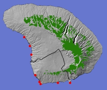 Seabird nesting concentration on Lana'i